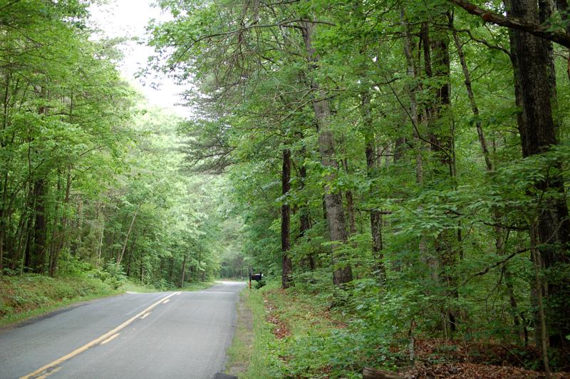 road1_Low