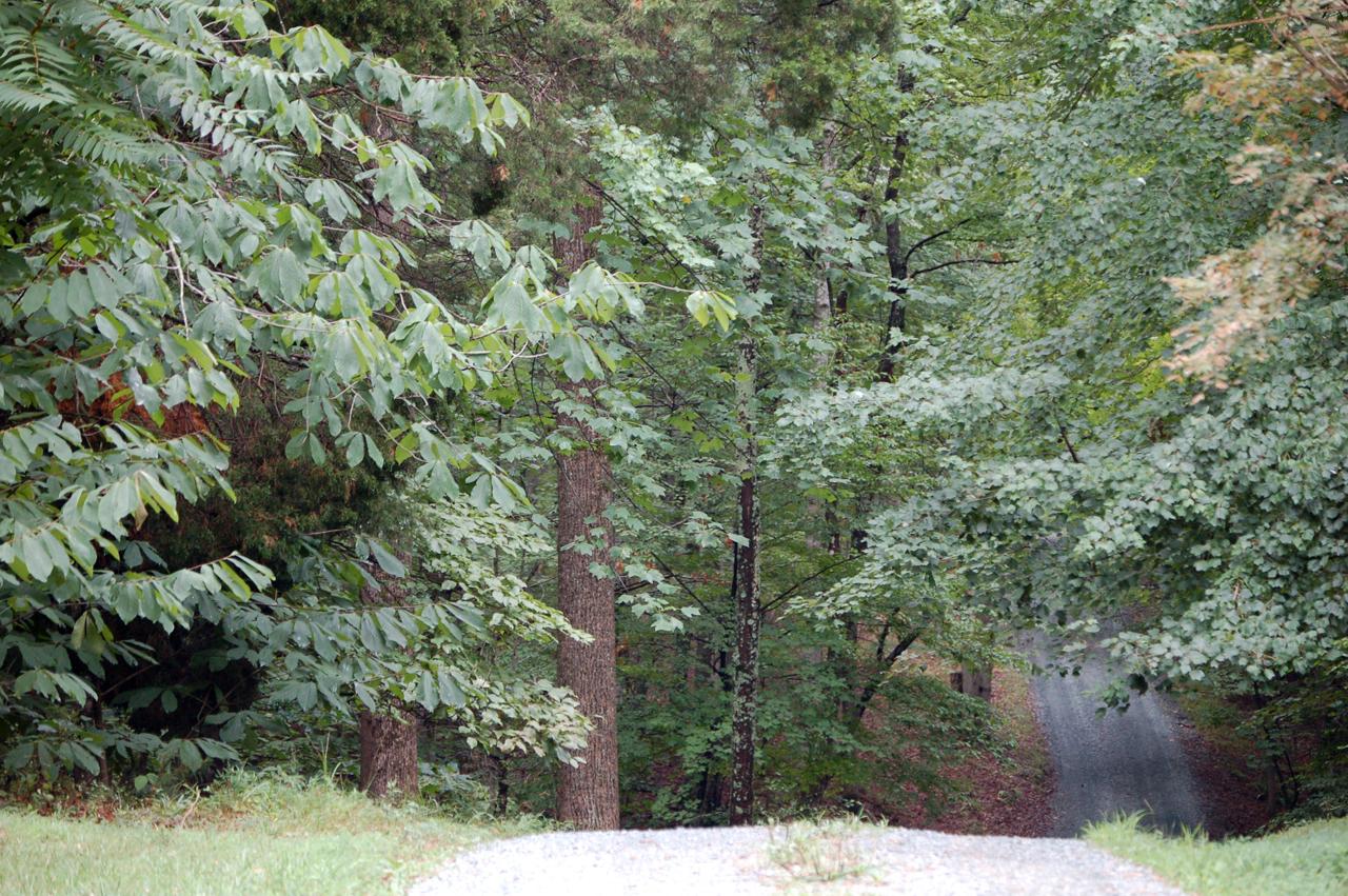 3_driveway