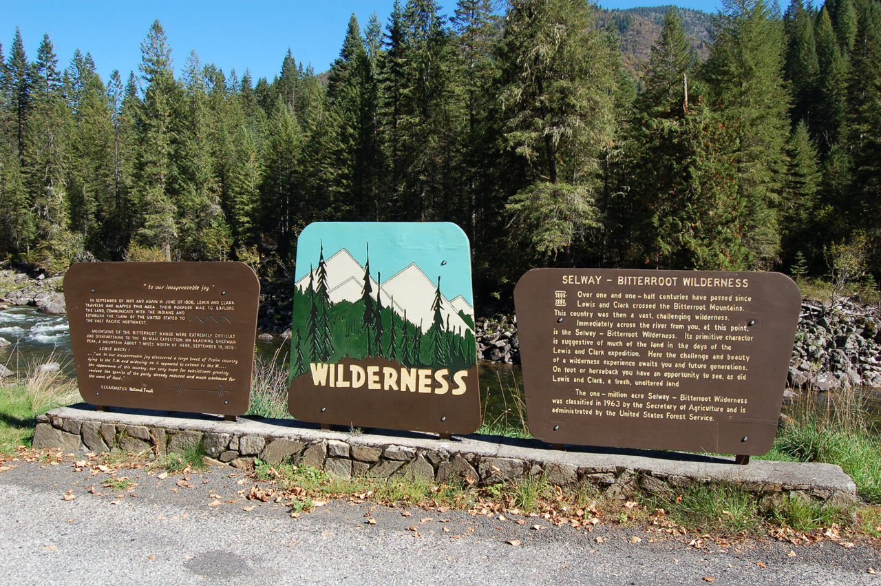 84_wilderness_1