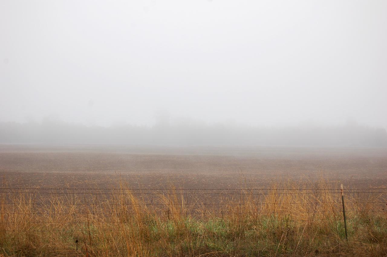 04_fog_3