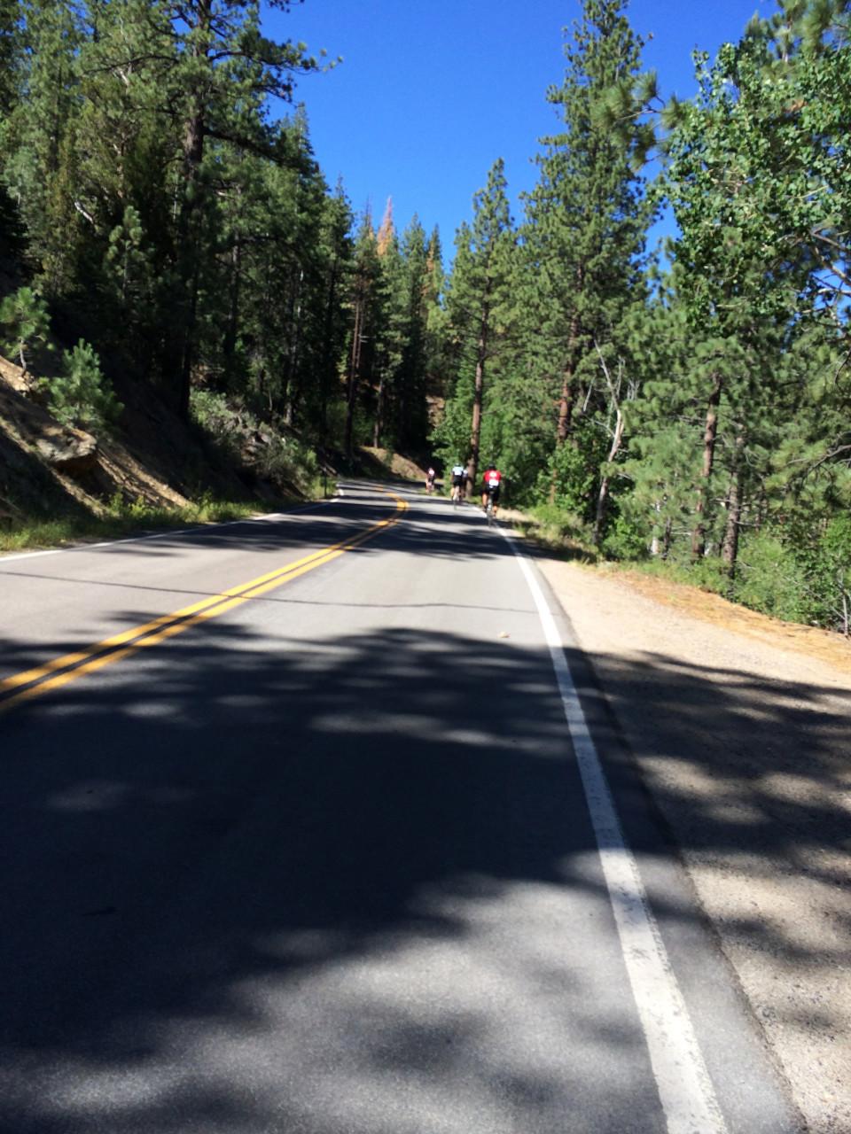 Going up Ebbetts Pass