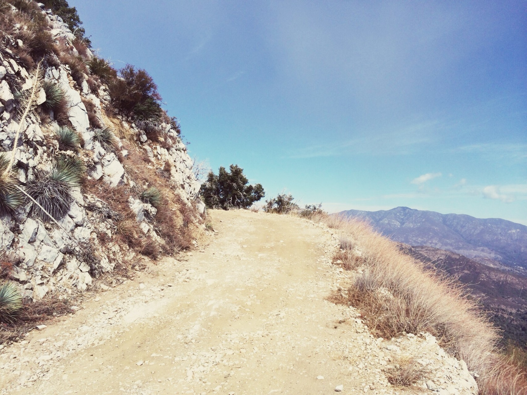 North Ridge Trail. Excellent surface in some area, broken and gravelly in others. But altogether awesome.